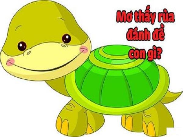 Mơ thấy rùa chiêm bao thấy rùa đánh con gì