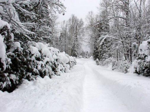 Nằm mơ thấy mùa đông có điềm báo tốt hay xấu?