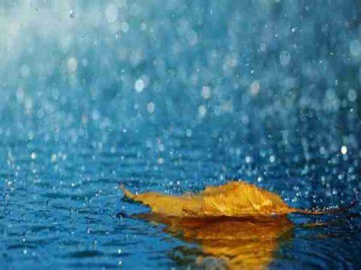 Mơ thấy mưa là điềm báo gì, đánh con nào dễ trúng?