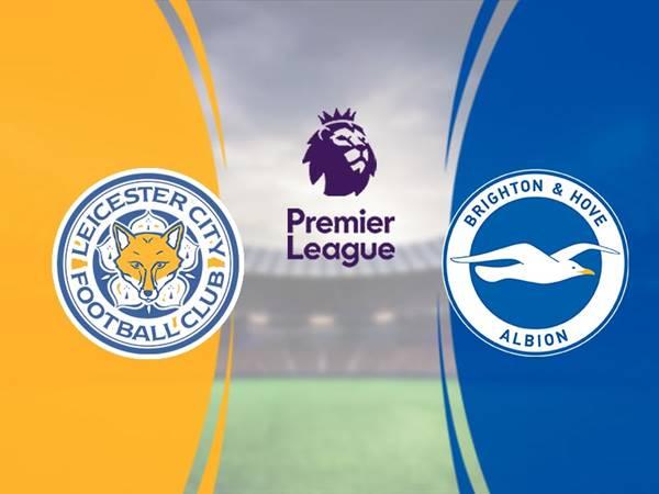 Nhận định Leicester vs Brighton, 00h30 ngày 24/6