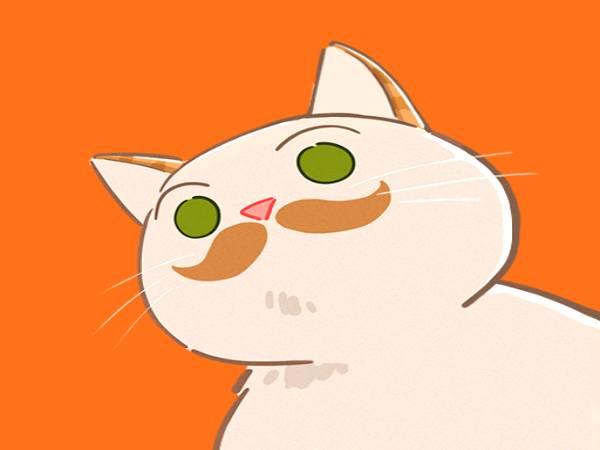 Top game nuôi mèo ảo hay nhất bạn nên thử một lần